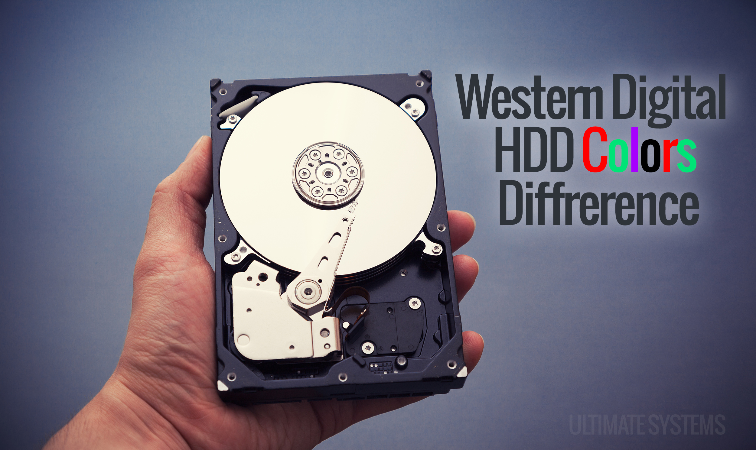 Western Digital Wd Hdd Colors Difference Hardisk Internal Pc 320gb Blue New